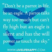 Parrots quote