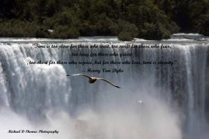 Picnics quote #1