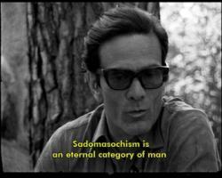 Pier Paolo Pasolini's quote