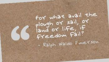 Plough quote #2