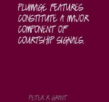 Plumage quote #2
