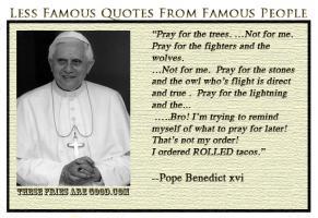 Pope Benedict XVI's quote