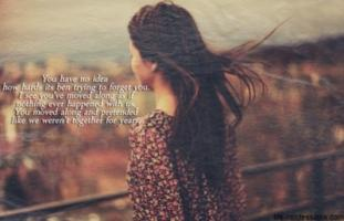 Pretended quote #2