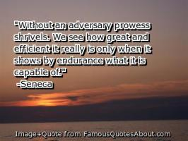 Prowess quote #2
