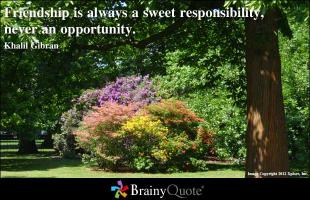 Responsibilities quote #2