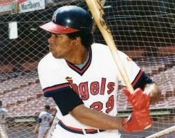 Rod Carew profile photo