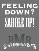 Saddle quote #1