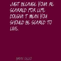 Scarred quote #2