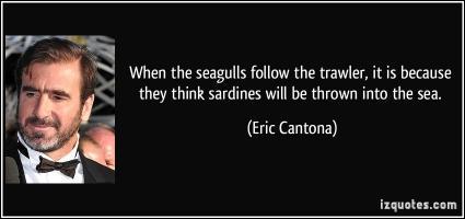 Seagulls quote #2