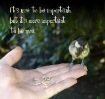 Sentimental quote #2