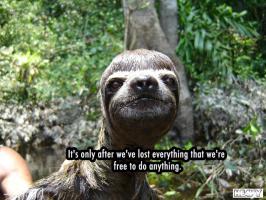 Sloth quote #2
