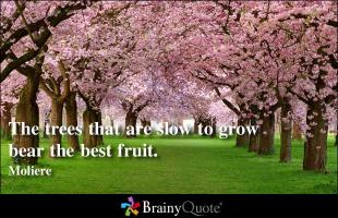 Slow Growth quote #2