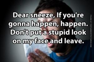 Sneeze quote #1