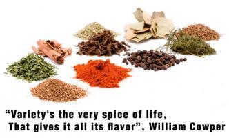 Spice quote #3