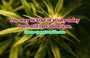 Stinky quote