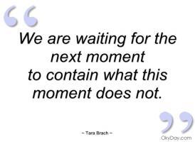 Tara Brach's quote