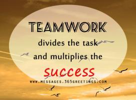 Team Effort quote #2