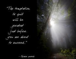 Tempt quote #2
