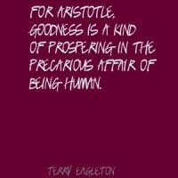 Terry Eagleton's quote