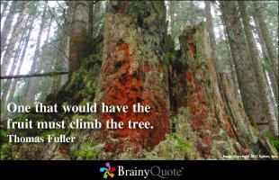 Thomas Fuller's quote