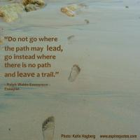 Trail quote #3