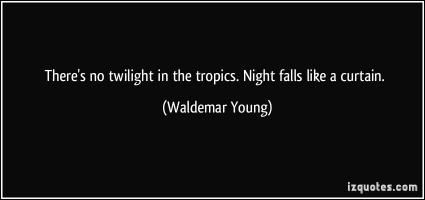 Waldemar Young's quote #1