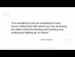 Wallace Stegner's quote