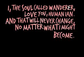 Wanderer quote #1