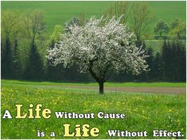 Wonderful Life quote #2