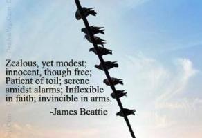 Zealous quote #2