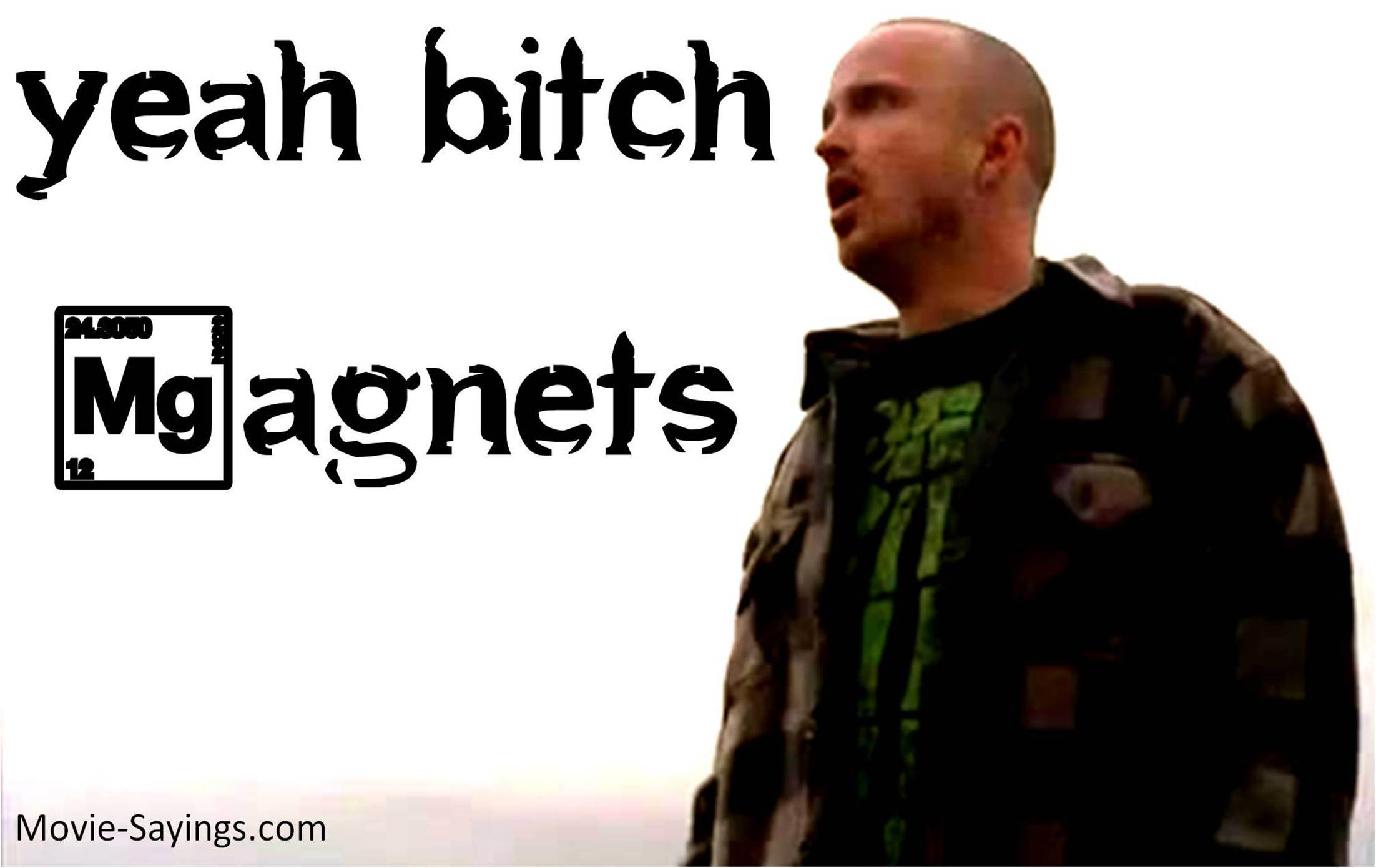 Aaron Paul's quote #4