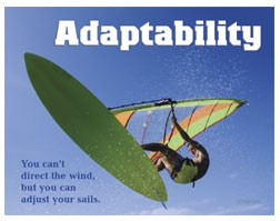 Adaptability quote #2