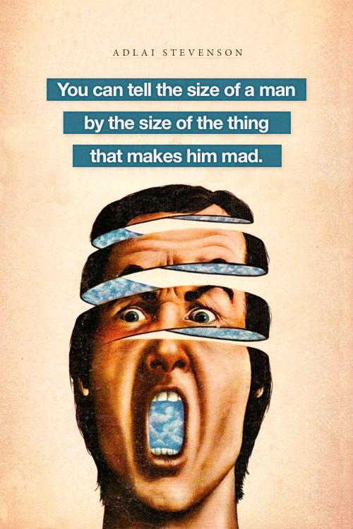 Adlai Stevenson's quote #6