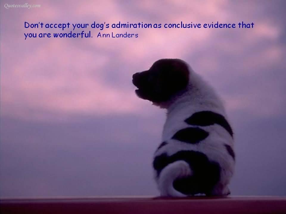 Admiration quote #3