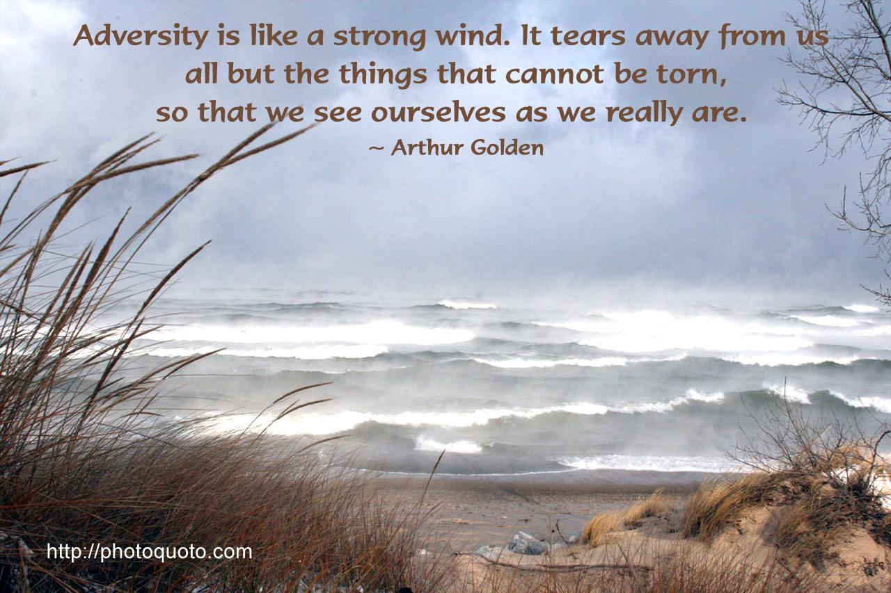 Adversity quote #4