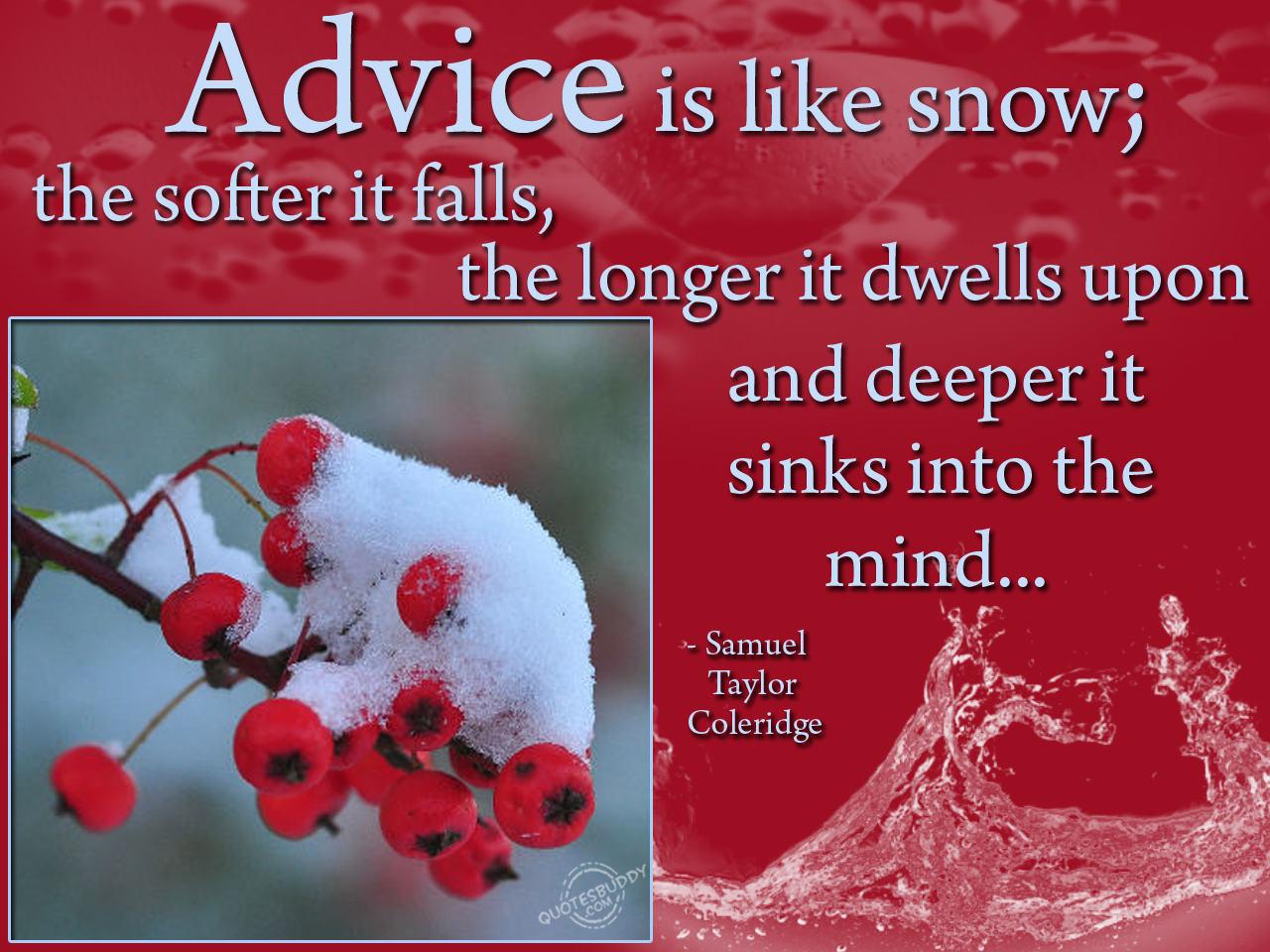 Advise quote #3