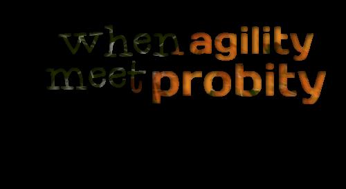 Agility quote #2