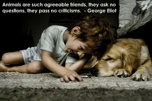 Agreeable quote #2