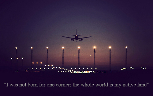 Airplane quote #6