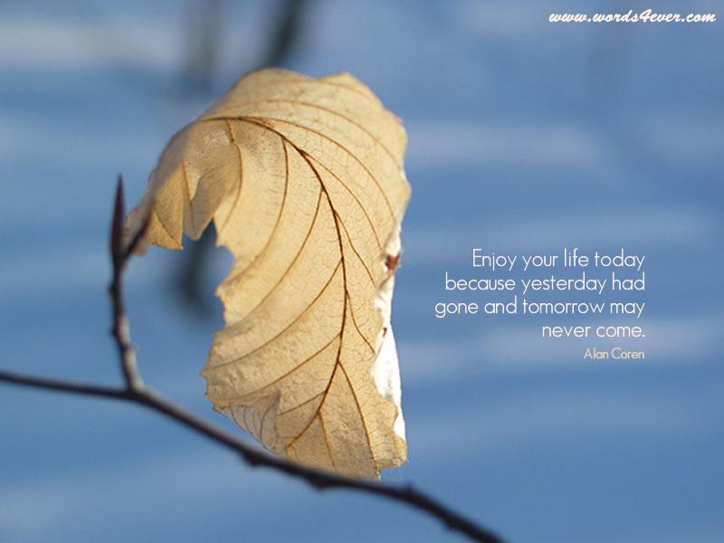 Alan Coren's quote #1