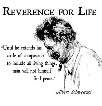 Albert Schweitzer's quote #7
