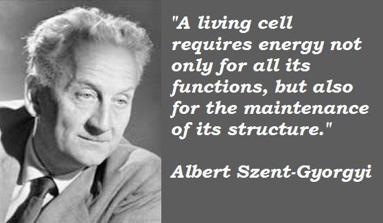 Albert Szent-Gyorgyi's quote #5