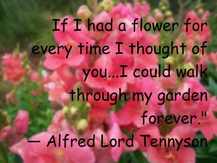 Alfred Lord Tennyson's quote #6