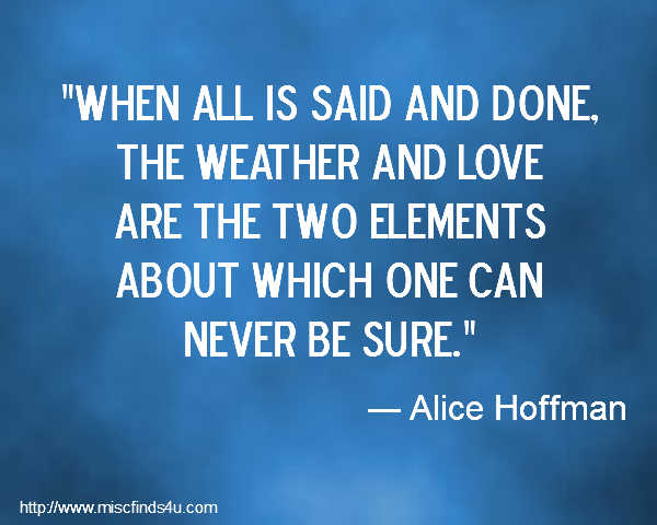 Alice Hoffman's quote #4
