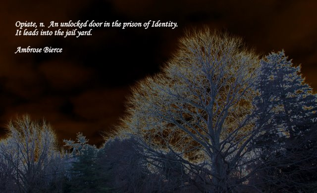 Ambrose Bierce's quote #7
