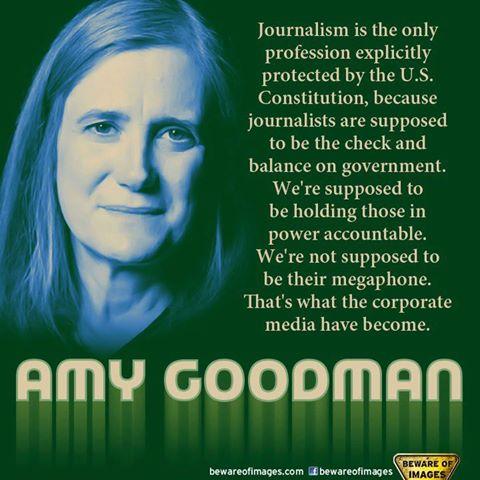Amy Goodman's quote #4
