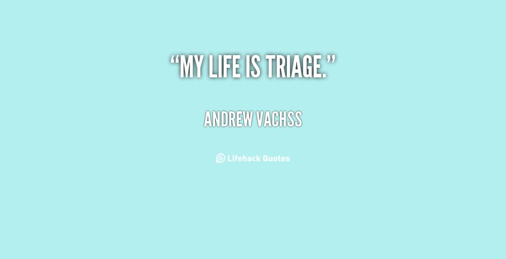 Andrew Vachss's quote #4