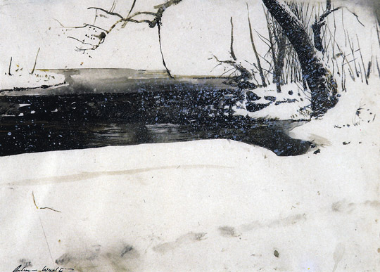 Andrew Wyeth's quote #7