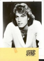Andy Gibb's quote #1