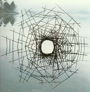 Andy Goldsworthy's quote #5